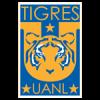 Tigres (10)
